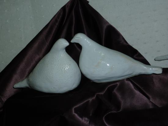 Deux pigeons de Danielle